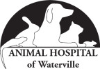 Animal Hospital of Waterville